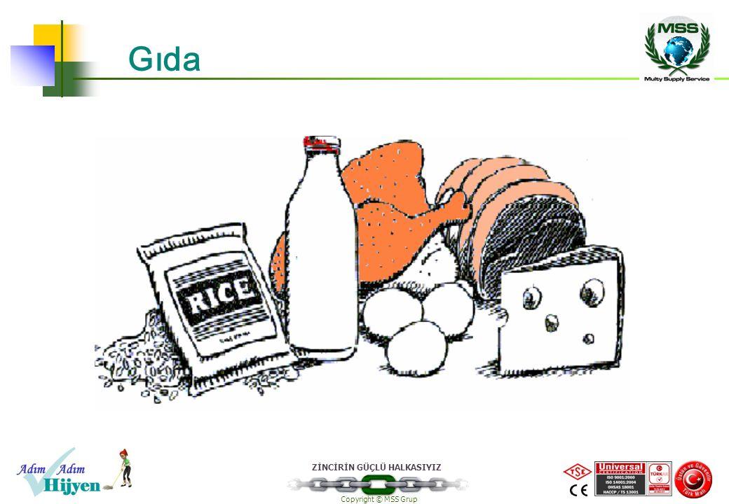 ZİNCİRİN GÜÇLÜ HALKASIYIZ Copyright © MSS Grup Gıda