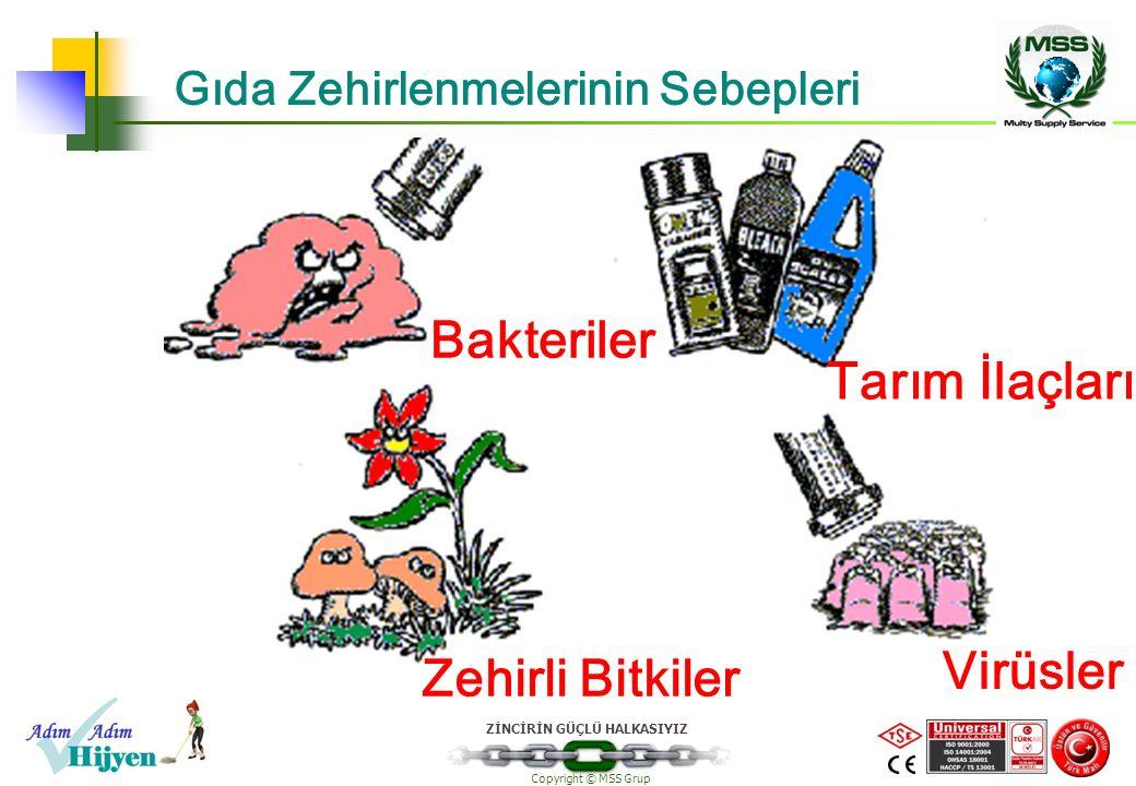 ZİNCİRİN GÜÇLÜ HALKASIYIZ Copyright © MSS Grup Gıda Zehirlenmelerinin Sebepleri Bakteriler Tarım İlaçları Zehirli Bitkiler Virüsler