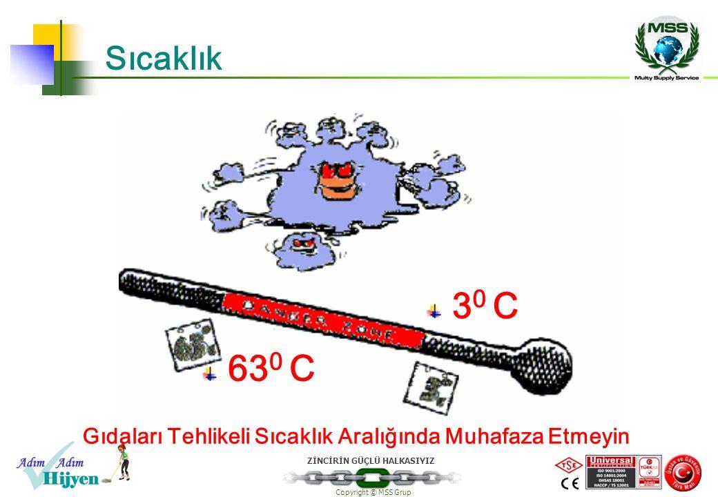 ZİNCİRİN GÜÇLÜ HALKASIYIZ Copyright © MSS Grup Sıcaklık 63 0 C 3 0 C Gıdaları Tehlikeli Sıcaklık Aralığında Muhafaza Etmeyin