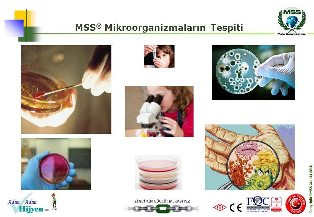 ZİNCİRİN GÜÇLÜ HALKASIYIZ Copyright©MSS Grup Ltd Şti. MSS ® Mikroorganizmaların Tespiti