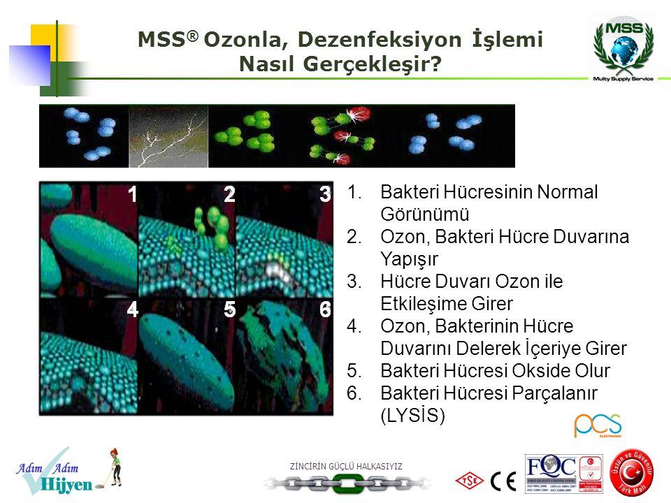 ZİNCİRİN GÜÇLÜ HALKASIYIZ MSS ® Ozonla, Dezenfeksiyon İşlemi Nasıl Gerçekleşir? 123 456 1.Bakteri Hücresinin Normal Görünümü 2.Ozon, Bakteri Hücre Duv