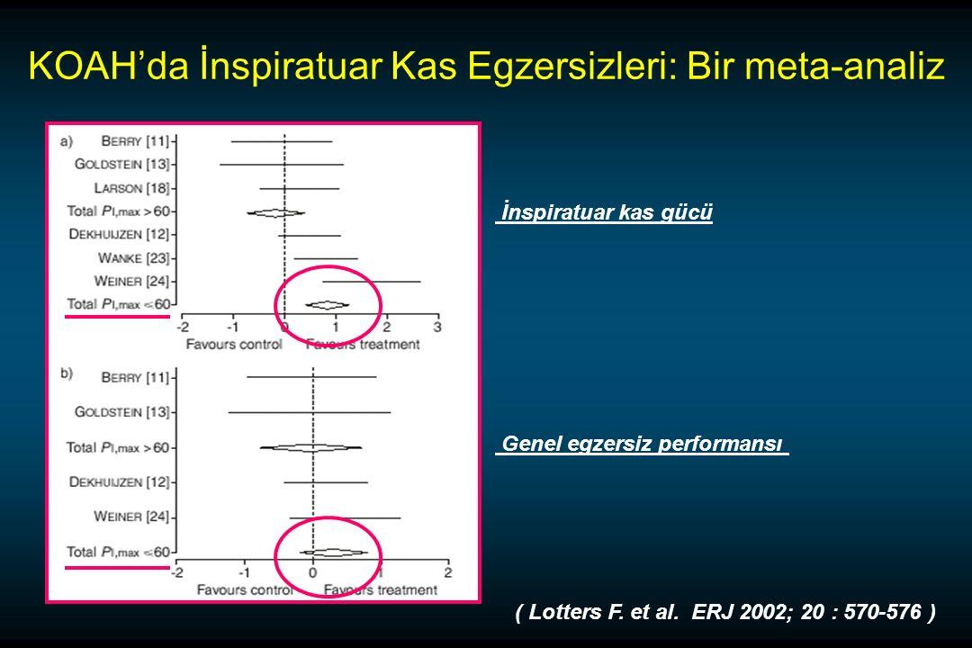 KOAH'da İnspiratuar Kas Egzersizleri: Bir meta-analiz ( Lotters F.