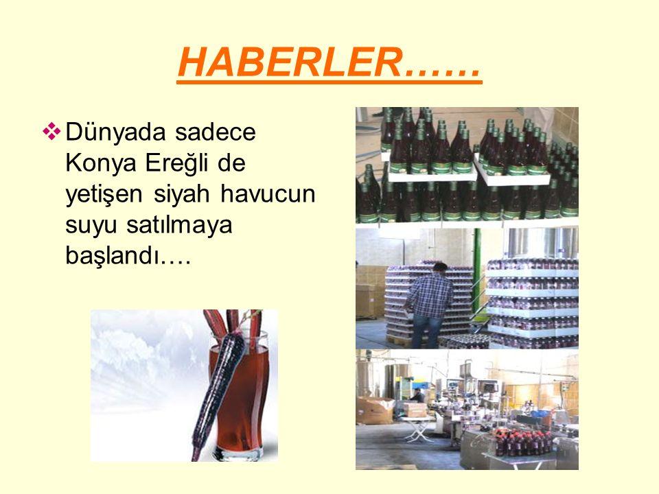 HABERLER……  Dünyada sadece Konya Ereğli de yetişen siyah havucun suyu satılmaya başlandı….
