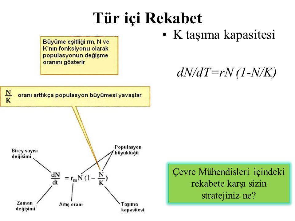 Tür içi Rekabet K taşıma kapasitesi dN/dT=rN (1-N/K) Çevre Mühendisleri içindeki rekabete karşı sizin stratejiniz ne?