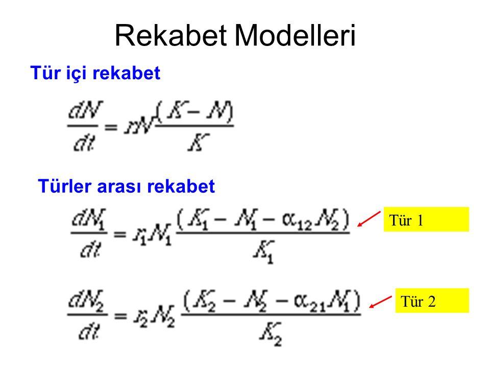 Rekabet Modelleri Tür içi rekabet Türler arası rekabet Tür 1 Tür 2