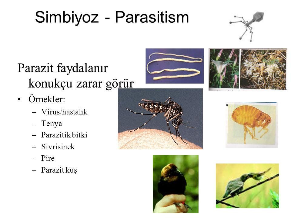 Simbiyoz - Parasitism Parazit faydalanır konukçu zarar görür Örnekler: –Virus/hastalık –Tenya –Parazitik bitki –Sivrisinek –Pire –Parazit kuş