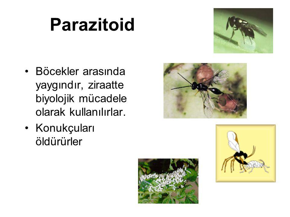 Parazitoid Böcekler arasında yaygındır, ziraatte biyolojik mücadele olarak kullanılırlar. Konukçuları öldürürler