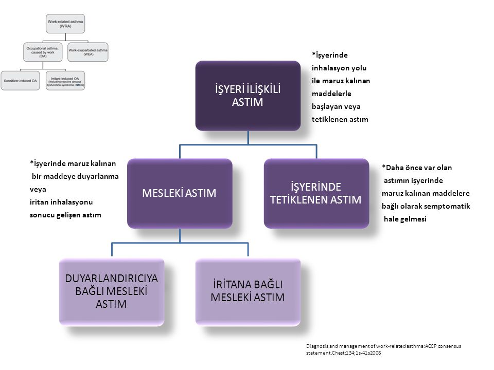 Diagnosis and management of work-related asthma:ACCP consensus statement.Chest;134;1s-41s2008 İŞYERİ İLİŞKİLİ ASTIM MESLEKİ ASTIM DUYARLANDIRICIYA BAĞ