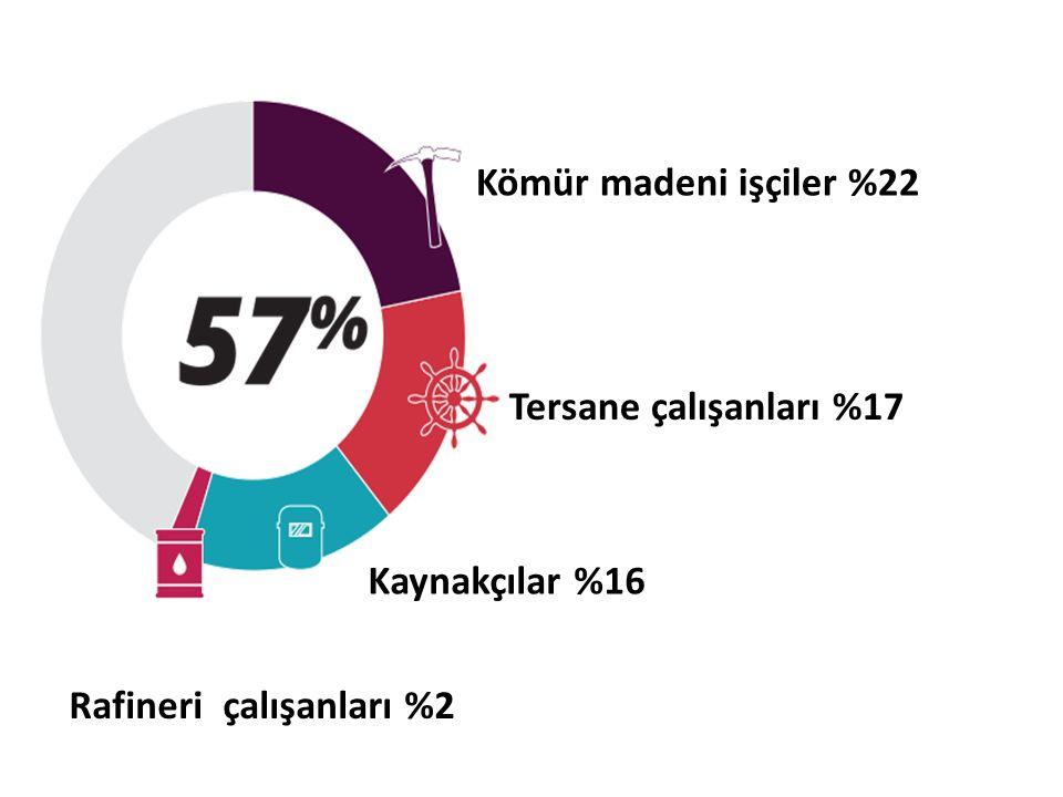 Kaynakçılar %16 Rafineri çalışanları %2 Kömür madeni işçiler %22 Tersane çalışanları %17