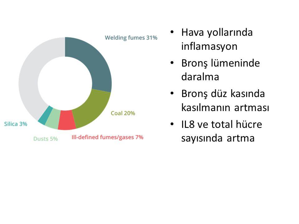 Hava yollarında inflamasyon Bronş lümeninde daralma Bronş düz kasında kasılmanın artması IL8 ve total hücre sayısında artma