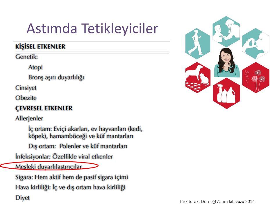Astımda Tetikleyiciler Türk toraks Derneği Astım kılavuzu 2014