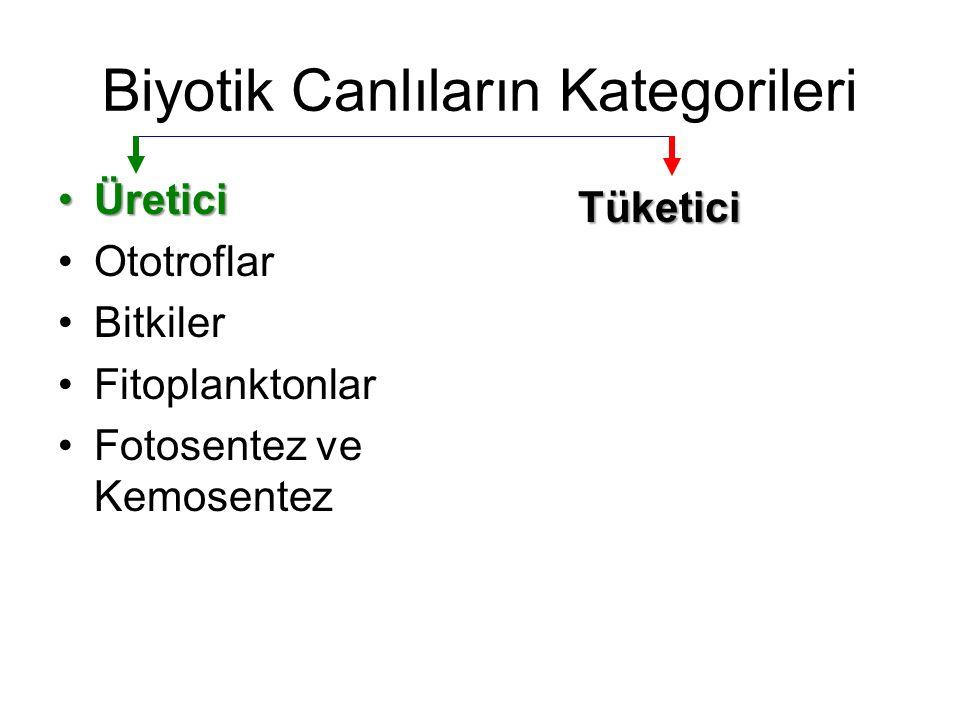 Biyotik Canlıların Kategorileri ÜreticiÜretici Ototroflar Bitkiler Fitoplanktonlar Fotosentez ve Kemosentez Tüketici