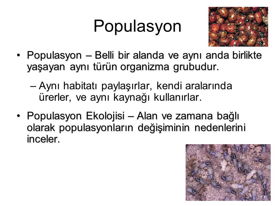 Populasyon Populasyon – Belli bir alanda ve aynı anda birlikte yaşayan aynı türün organizma grubudur.Populasyon – Belli bir alanda ve aynı anda birlik