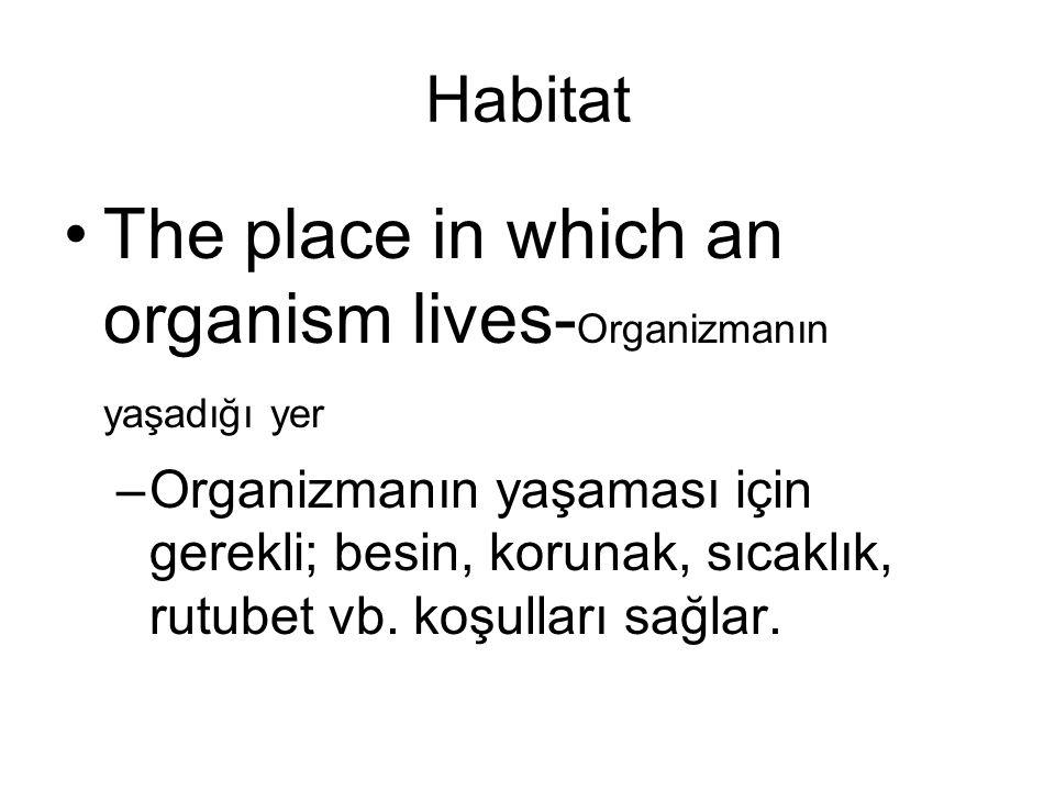 Habitat The place in which an organism lives- Organizmanın yaşadığı yer –Organizmanın yaşaması için gerekli; besin, korunak, sıcaklık, rutubet vb. koş