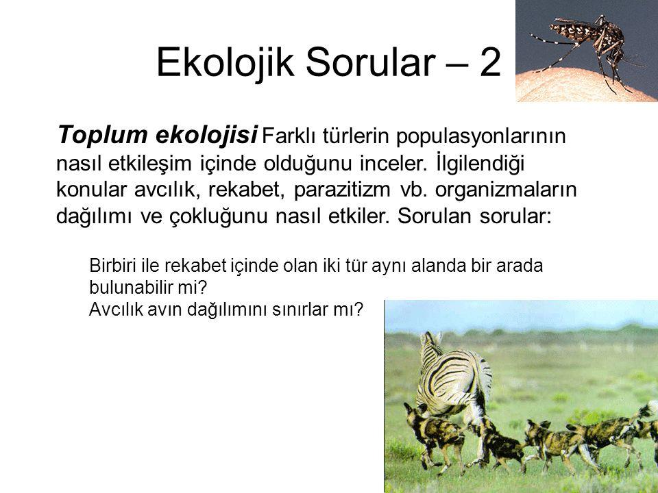 Ekolojik Sorular – 2 Toplum ekolojisi Farklı türlerin populasyonlarının nasıl etkileşim içinde olduğunu inceler. İlgilendiği konular avcılık, rekabet,