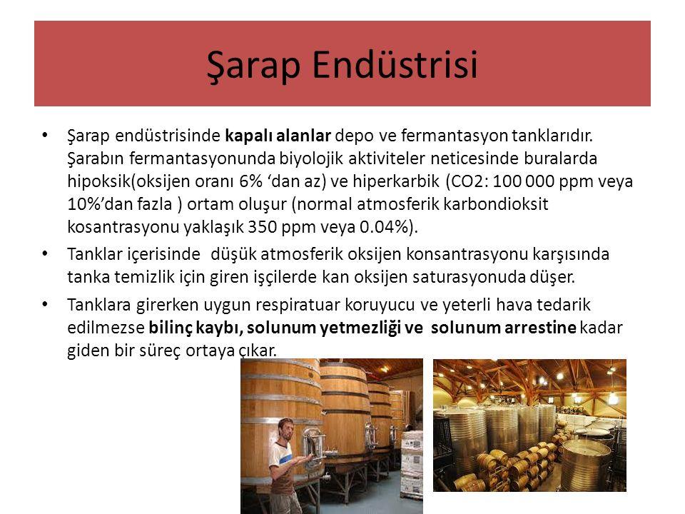 Şarap Endüstrisi Şarap endüstrisinde kapalı alanlar depo ve fermantasyon tanklarıdır. Şarabın fermantasyonunda biyolojik aktiviteler neticesinde bural