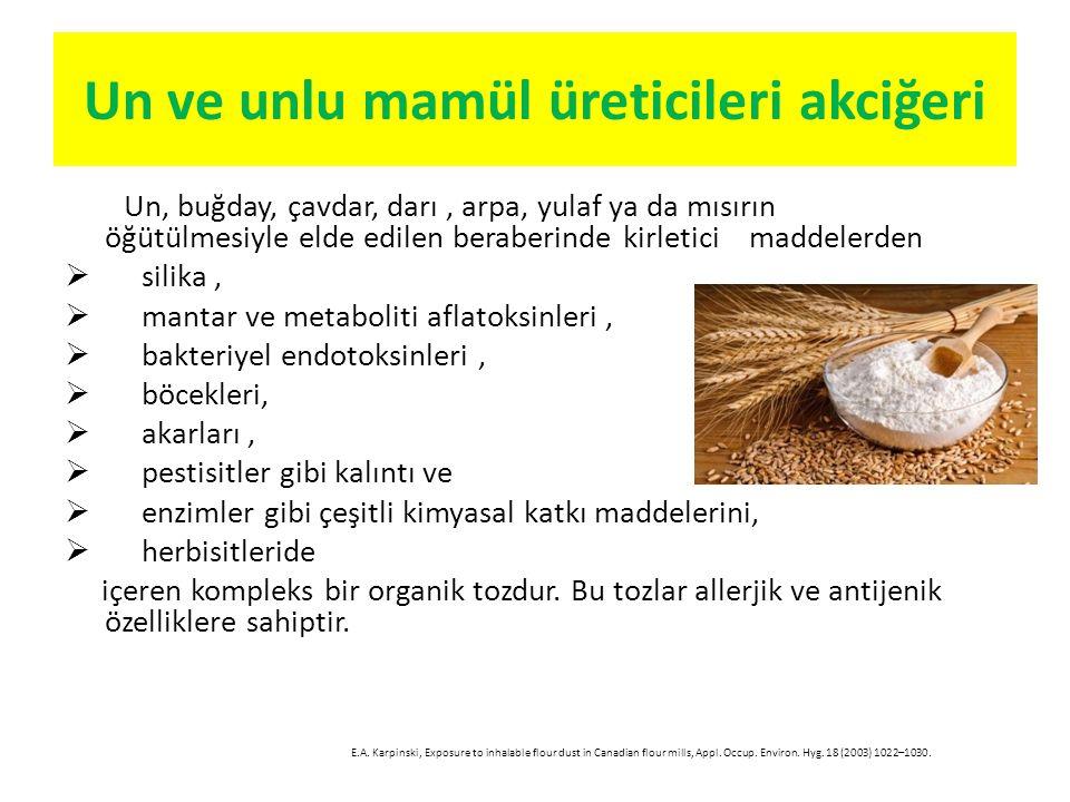 Un ve unlu mamül üreticileri akciğeri Un, buğday, çavdar, darı, arpa, yulaf ya da mısırın öğütülmesiyle elde edilen beraberinde kirletici maddelerden