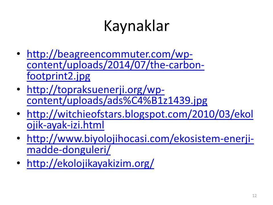 Kaynaklar http://beagreencommuter.com/wp- content/uploads/2014/07/the-carbon- footprint2.jpg http://beagreencommuter.com/wp- content/uploads/2014/07/t