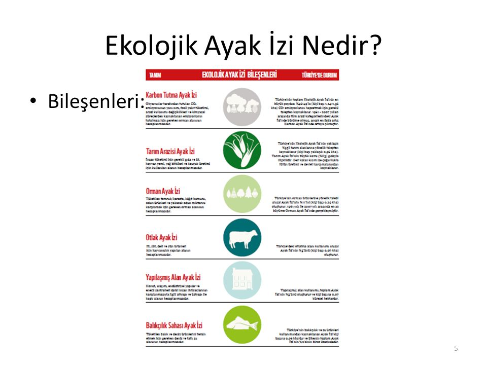 Ekolojik Ayak İzi Türkiye 1,5 Dünya kapasitesinde tüketiyor Bunda en büyük pay %52 ile gıdanın(Tarım, Otlak ve Balıkçılık kategorilerinin büyük bölümü) Bu tüketimden tamamen vazgeçmek anlamına gelmemeli İnsan refahı önemli Temel ihtiyaçlar (temiz su, barınma, kadın erkek eşitliği, sağlık, eğitim) her insan için karşılanabilmeli Temel ihtiyaçları karşılamak için ve daha fazlası için kaynakları nasıl kullandığımız önemli Çöpe ekmek atmamaktan, sebze artıklarını kompost olarak değerlendirmeye kadar pekçok hareketle katkı verebiliriz.