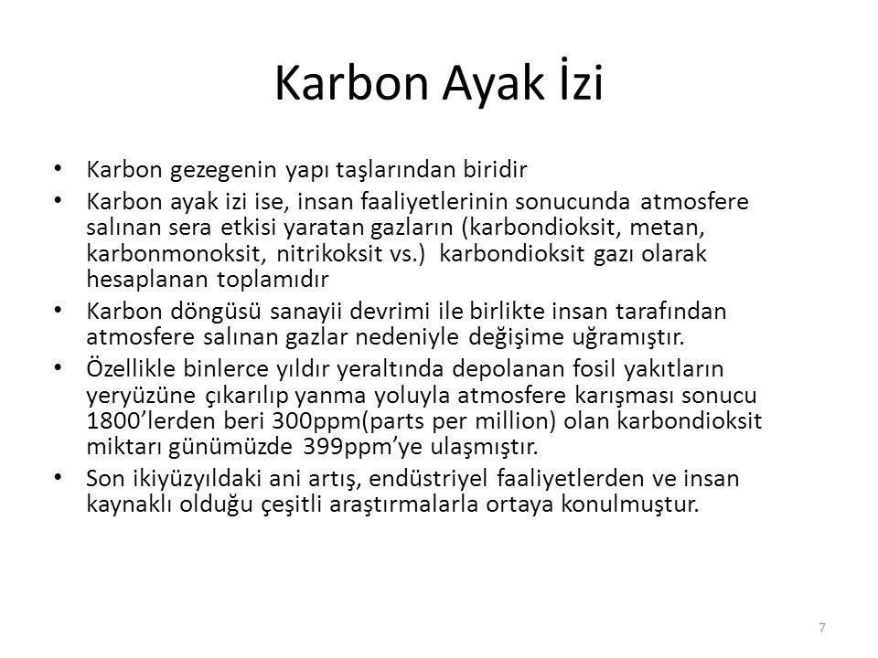 Karbon Döngüsü 8