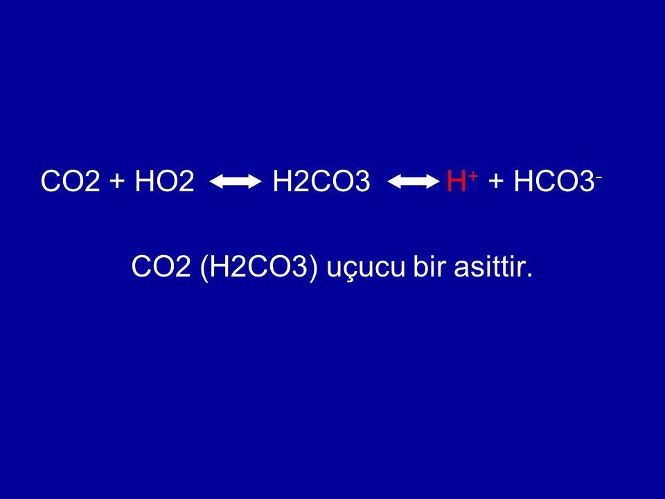 CO2 + HO2 H2CO3 H + + HCO3 - CO2 (H2CO3) uçucu bir asittir.