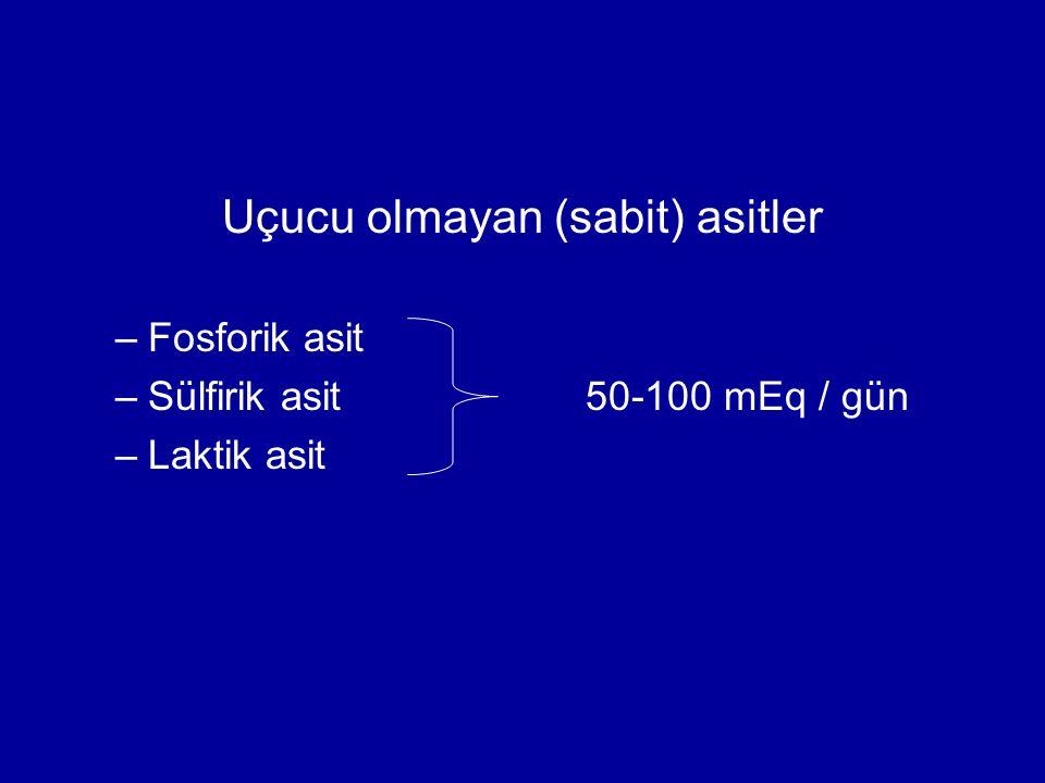 Uçucu olmayan (sabit) asitler –Fosforik asit –Sülfirik asit50-100 mEq / gün –Laktik asit