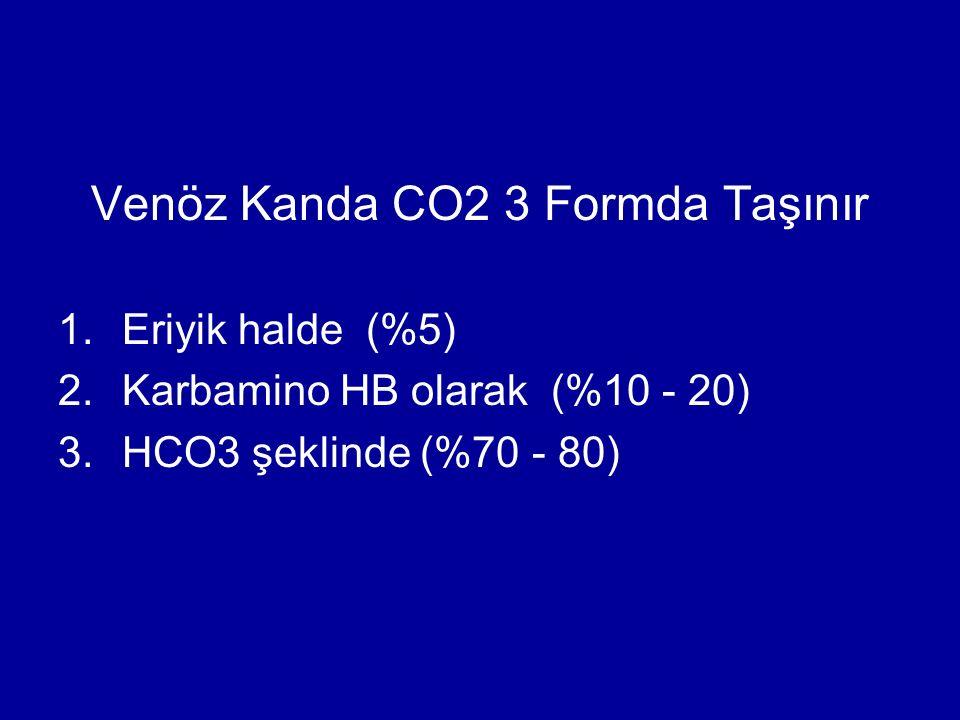Venöz Kanda CO2 3 Formda Taşınır 1.Eriyik halde (%5) 2.Karbamino HB olarak (%10 - 20) 3.HCO3 şeklinde (%70 - 80)