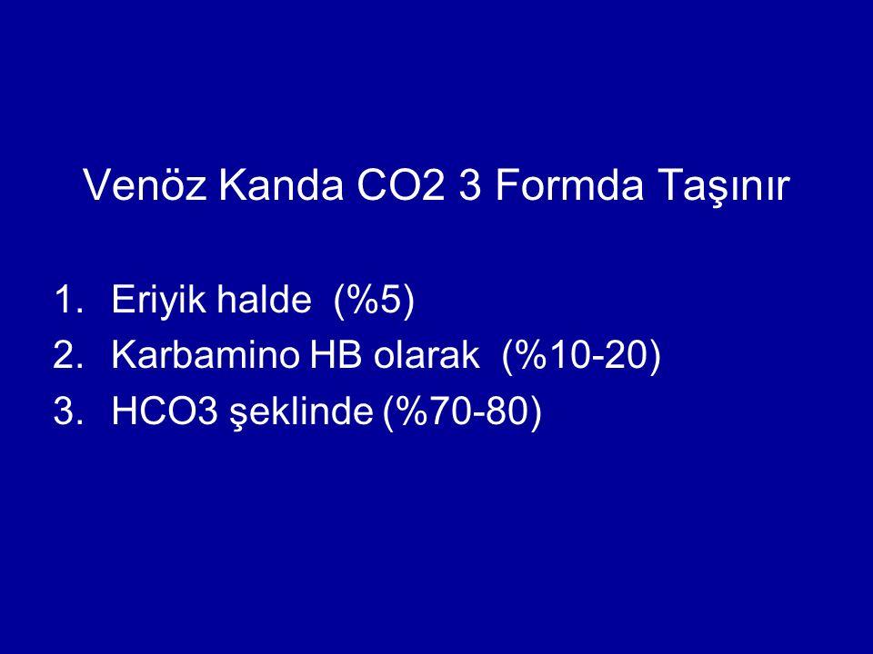 Venöz Kanda CO2 3 Formda Taşınır 1.Eriyik halde (%5) 2.Karbamino HB olarak (%10-20) 3.HCO3 şeklinde (%70-80)