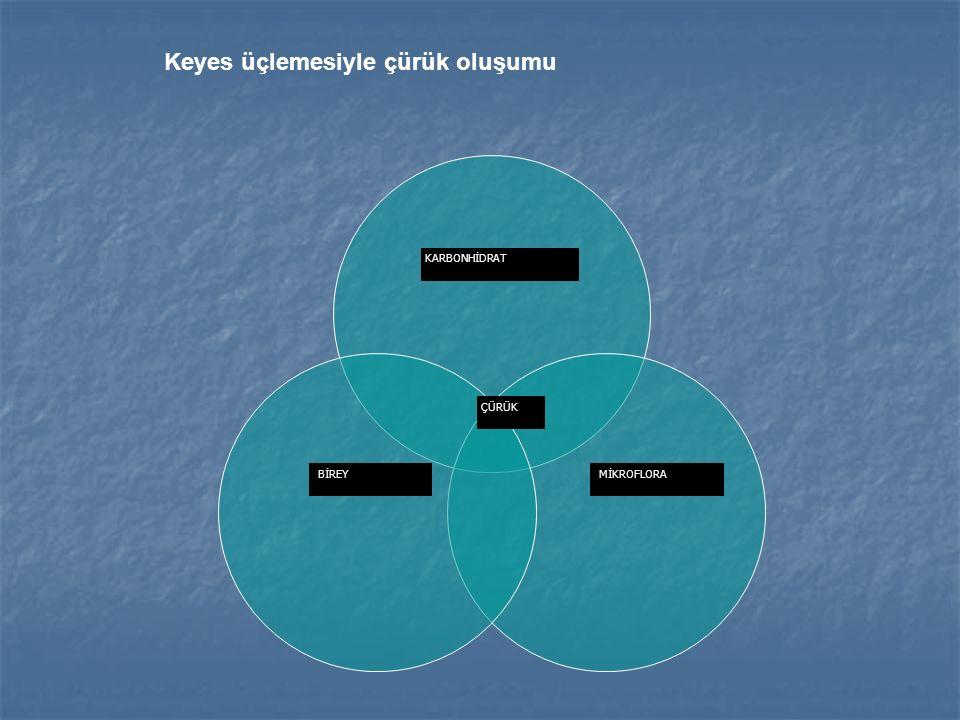 KARBONHİDRAT MİKROFLORABİREY ÇÜRÜK Keyes üçlemesiyle çürük oluşumu