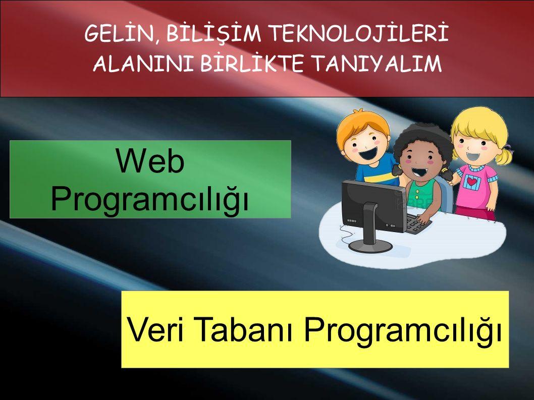 Web Programcılığı Veri Tabanı Programcılığı GELİN, BİLİŞİM TEKNOLOJİLERİ ALANINI BİRLİKTE TANIYALIM