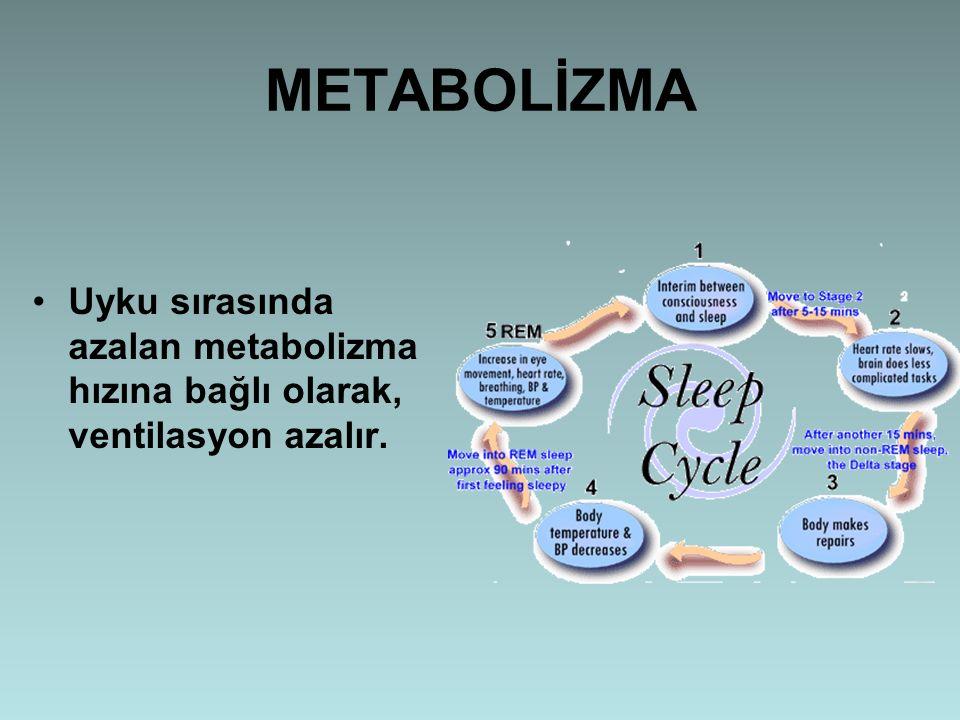 METABOLİZMA Uyku sırasında azalan metabolizma hızına bağlı olarak, ventilasyon azalır.