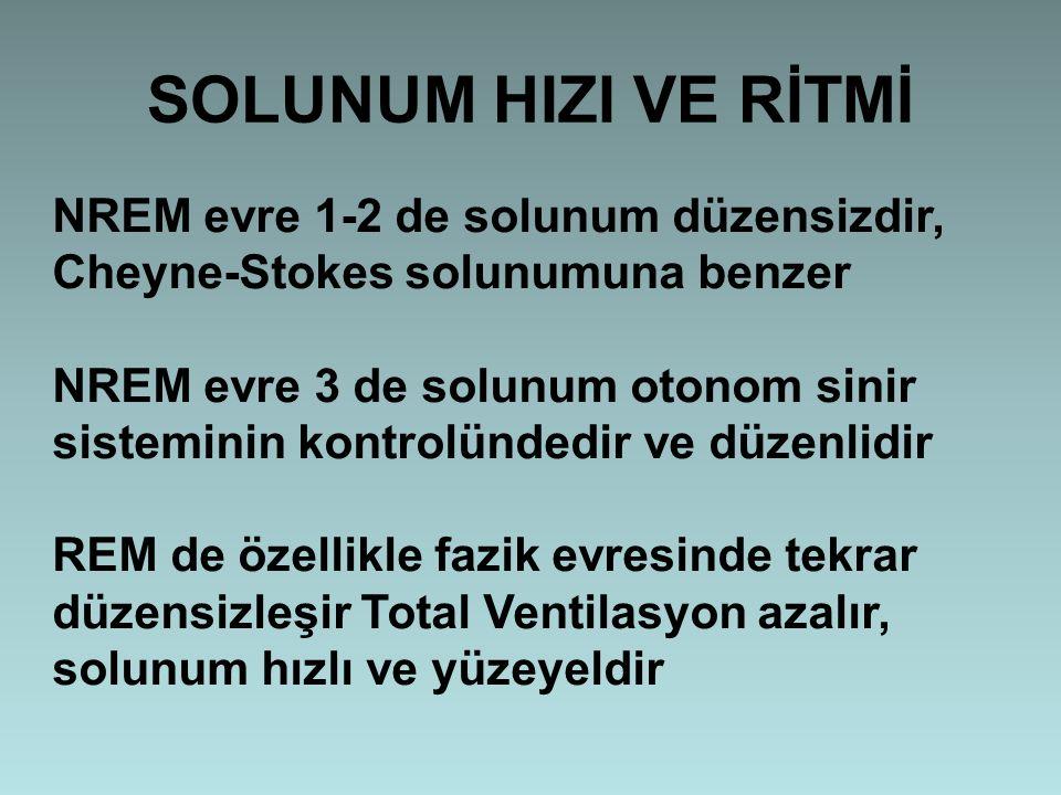 SOLUNUM HIZI VE RİTMİ NREM evre 1-2 de solunum düzensizdir, Cheyne-Stokes solunumuna benzer NREM evre 3 de solunum otonom sinir sisteminin kontrolünde