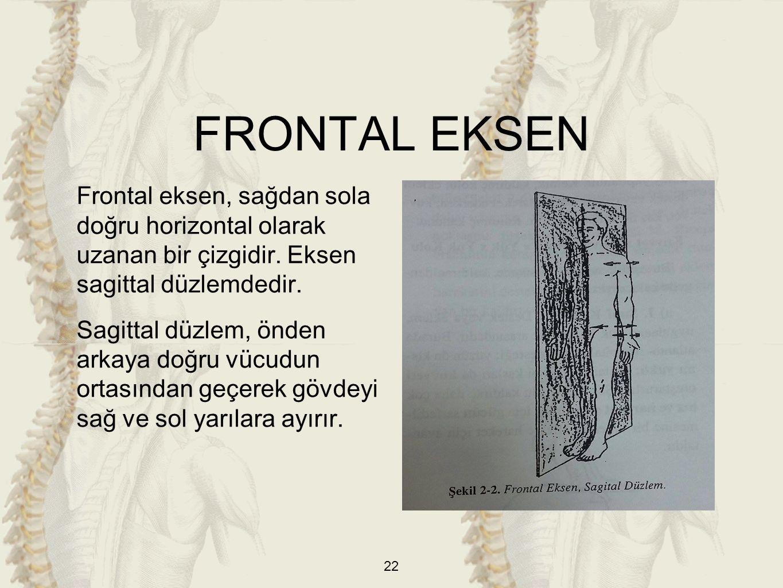 Frontal eksen, sağdan sola doğru horizontal olarak uzanan bir çizgidir. Eksen sagittal düzlemdedir. Sagittal düzlem, önden arkaya doğru vücudun ortası