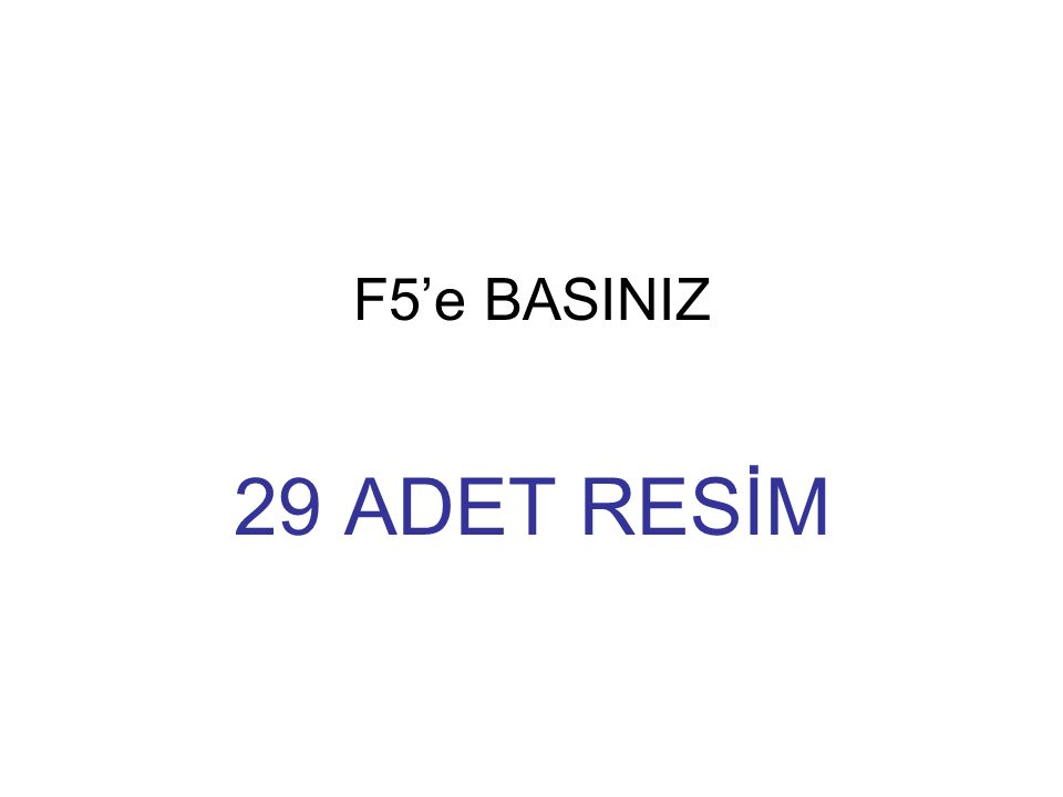 F5'e BASINIZ 29 ADET RESİM