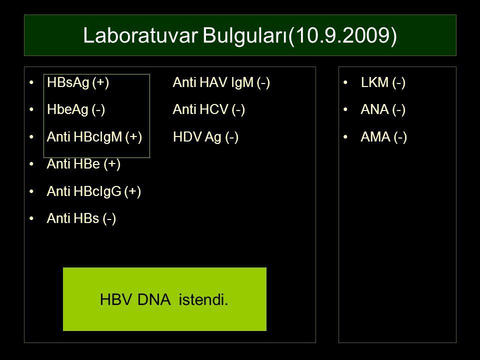 Laboratuvar Bulguları(10.9.2009) HBsAg (+)Anti HAV IgM (-) HbeAg (-)Anti HCV (-) Anti HBcIgM (+)HDV Ag (-) Anti HBe (+) Anti HBcIgG (+) Anti HBs (-) L