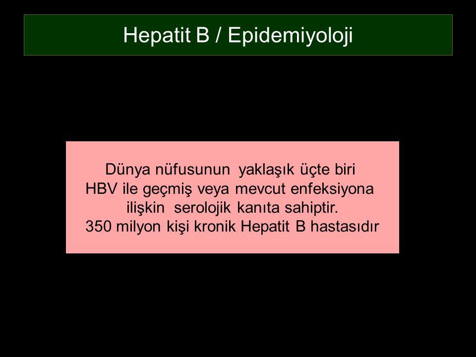 Hepatit B / Epidemiyoloji Dünya nüfusunun yaklaşık üçte biri HBV ile geçmiş veya mevcut enfeksiyona ilişkin serolojik kanıta sahiptir. 350 milyon kişi