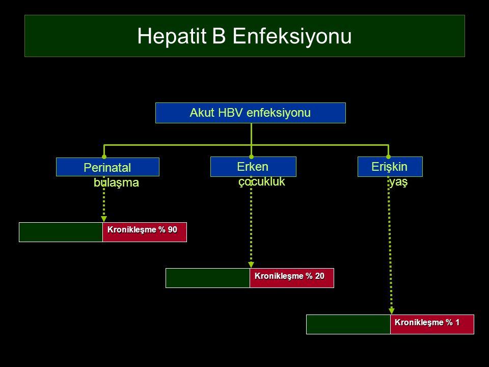 Hepatit B Enfeksiyonu Perinatal bulaşma Erişkin yaş Erken çocukluk Akut HBV enfeksiyonu Kronikleşme % 90 İyileşme % 10 Kronikleşme % 20 İyileşme % 80