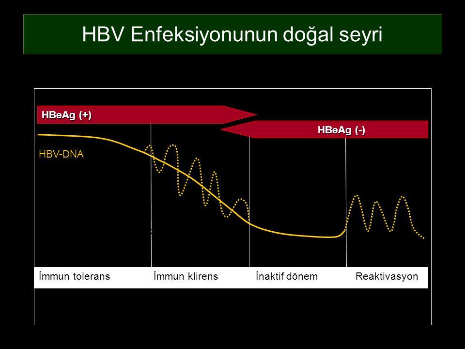 HBV Enfeksiyonunun doğal seyri İmmun tolerans İmmun klirens İnaktif dönem Reaktivasyon HBeAg (+) HBV-DNA ALT HBeAg (-) 