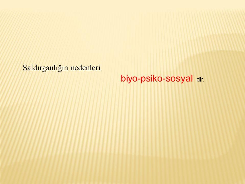 Saldırganlığın nedenleri, biyo-psiko-sosyal dir.