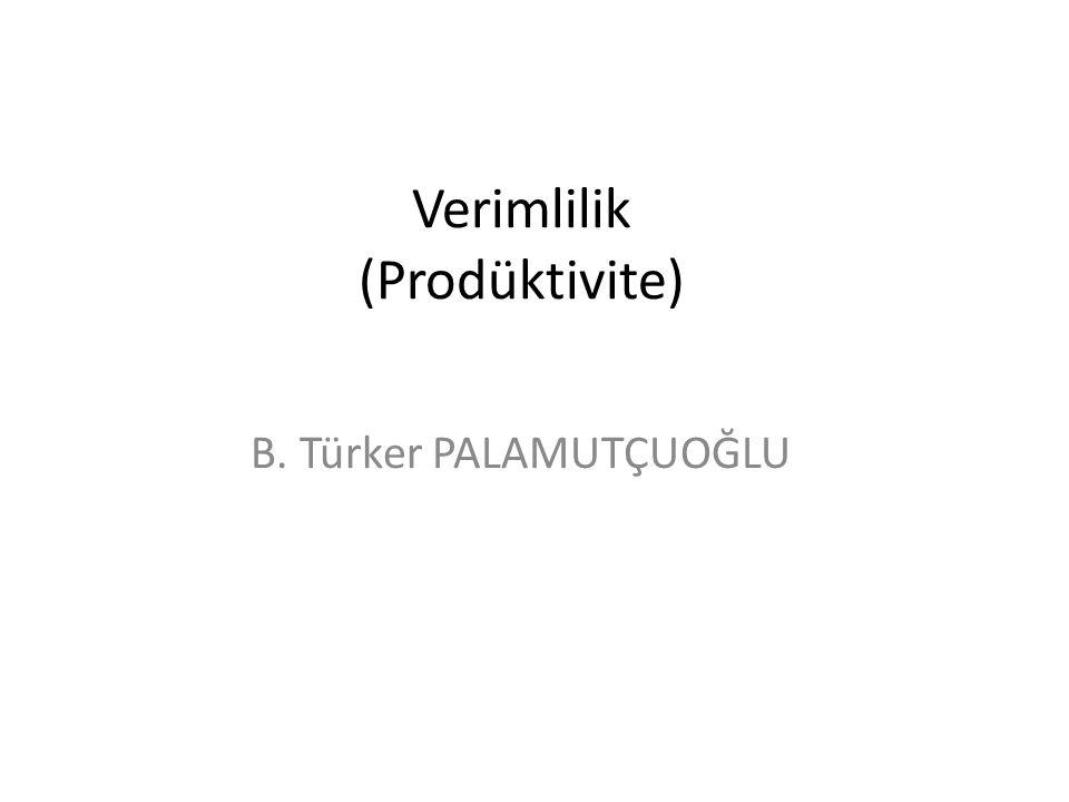 Verimlilik (Prodüktivite) B. Türker PALAMUTÇUOĞLU