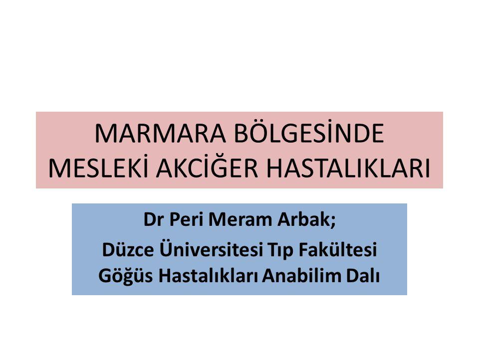 MARMARA BÖLGESİNDE MESLEKİ AKCİĞER HASTALIKLARI Dr Peri Meram Arbak; Düzce Üniversitesi Tıp Fakültesi Göğüs Hastalıkları Anabilim Dalı