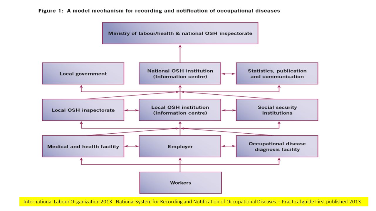 International Labour Organization 2013 - National System for Recording and Notification of Occupational Diseases – Practical guide First published 201