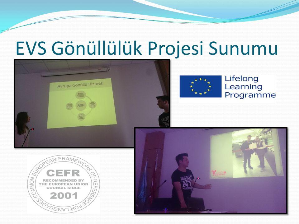 EVS Gönüllülük Projesi Sunumu