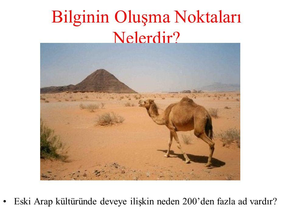 Bilginin Oluşma Noktaları Nelerdir? Eski Arap kültüründe deveye ilişkin neden 200'den fazla ad vardır?