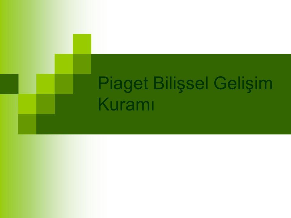 Piaget Bilişsel Gelişim Kuramı