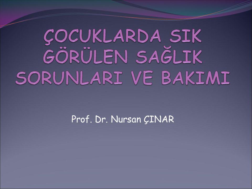 Prof. Dr. Nursan ÇINAR