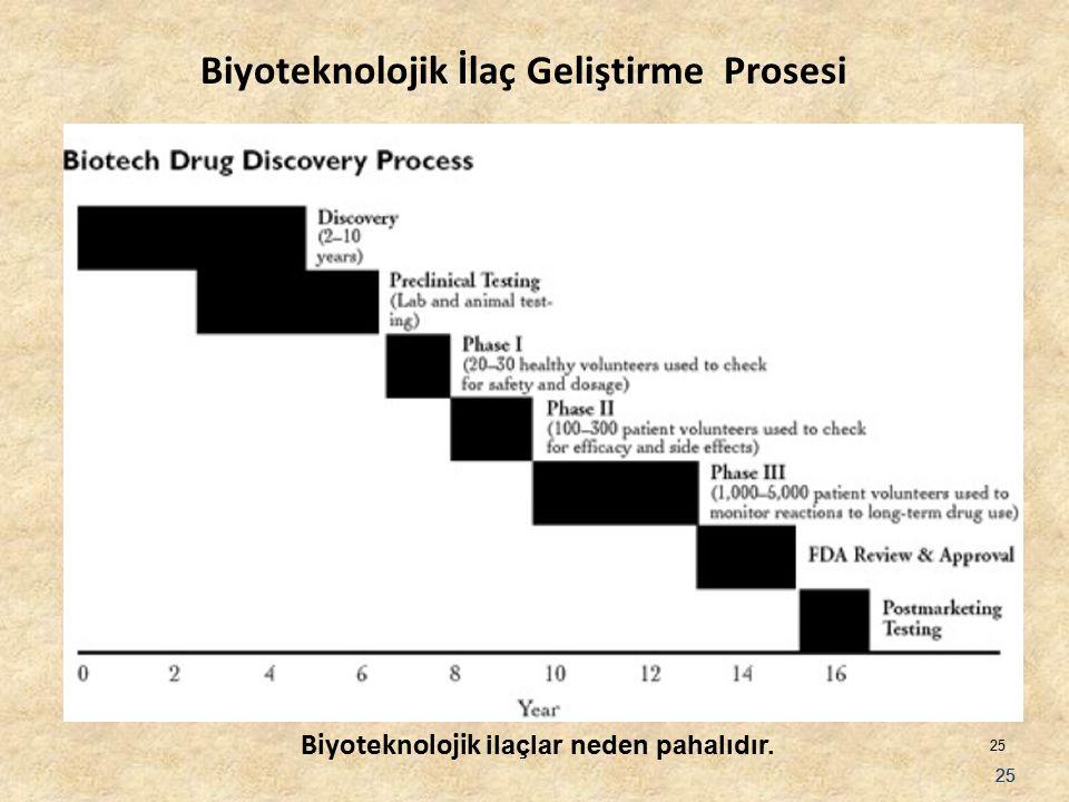 25 Biyoteknolojik İlaç Geliştirme Prosesi Biyoteknolojik ilaçlar neden pahalıdır.