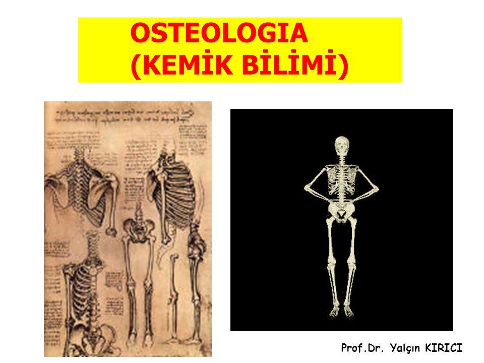 OSTEOLOGIA (KEMİK BİLİMİ) Prof.Dr. Yalçın KIRICI
