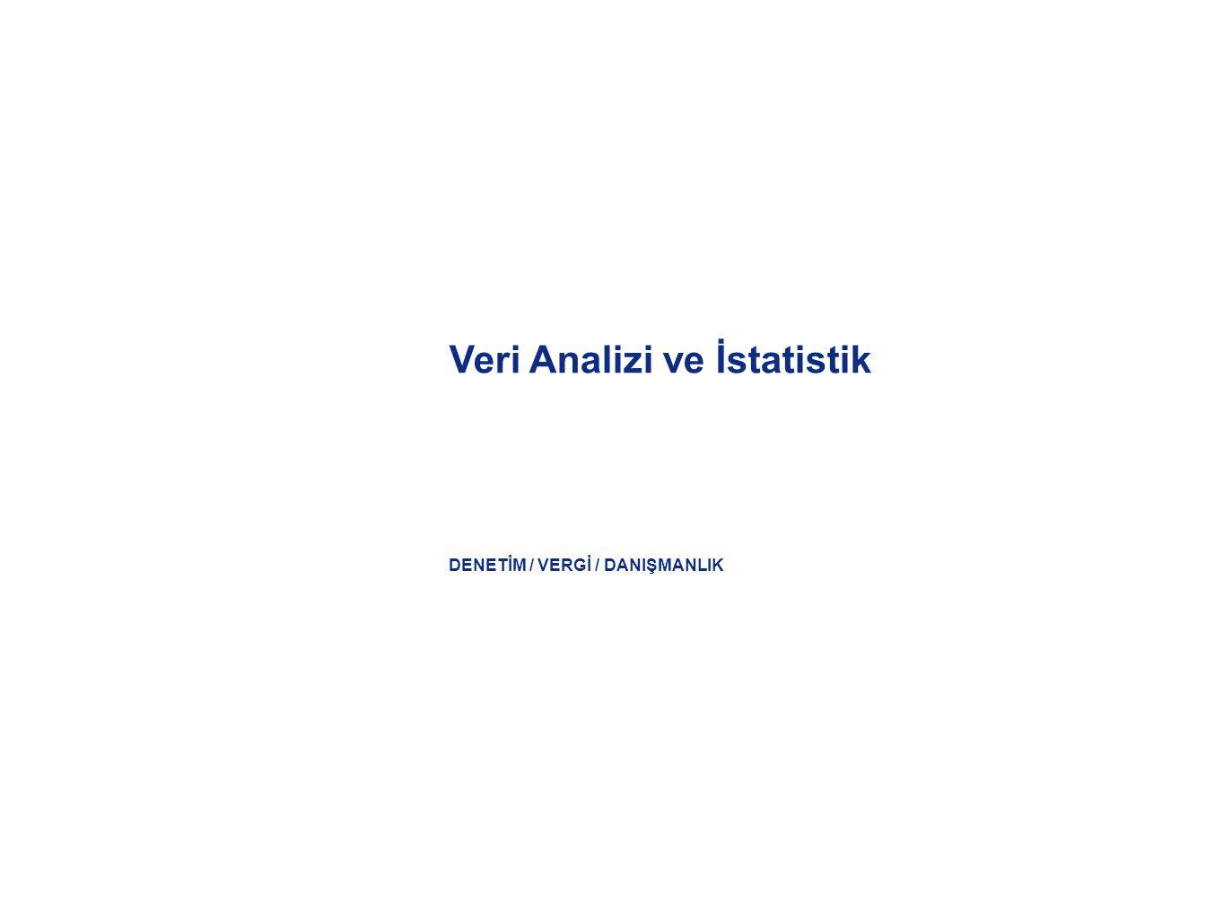 DENETİM / VERGİ / DANIŞMANLIK Veri Analizi ve İstatistik