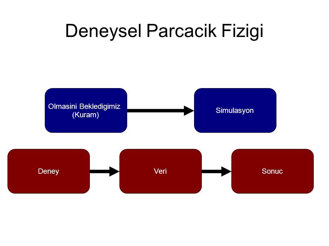 Deneysel Parcacik Fizigi Olmasini Bekledigimiz (Kuram) Simulasyon DeneySonucVeri